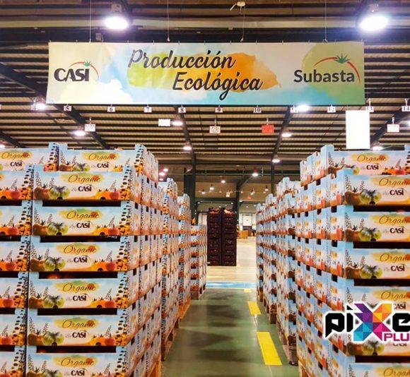 Lona y diseño de envases de la producción ecológica de CASI